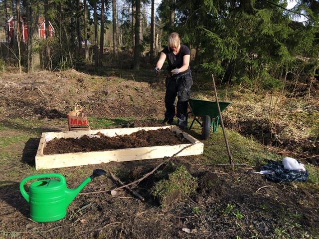 Vad gjorde ni på årets hittills varmaste dag? Jag bråkade med både stenar och rötter när jag försökte gräva bort grässvålen i den nya odlingslådan. Svettigt!