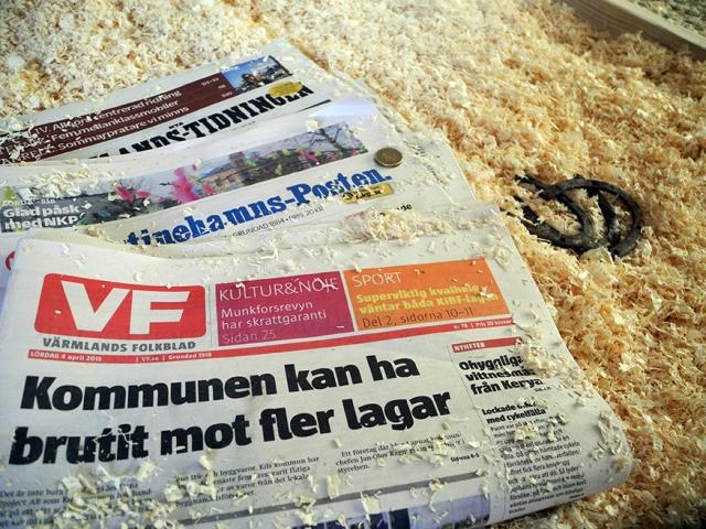 Vi har lämnat ett nutida meddelande till framtida renoverare. Två länstidningar, en lokaltidning, en guldtia och de gamla hästskorna vi hittade i den gamla isoleringen.